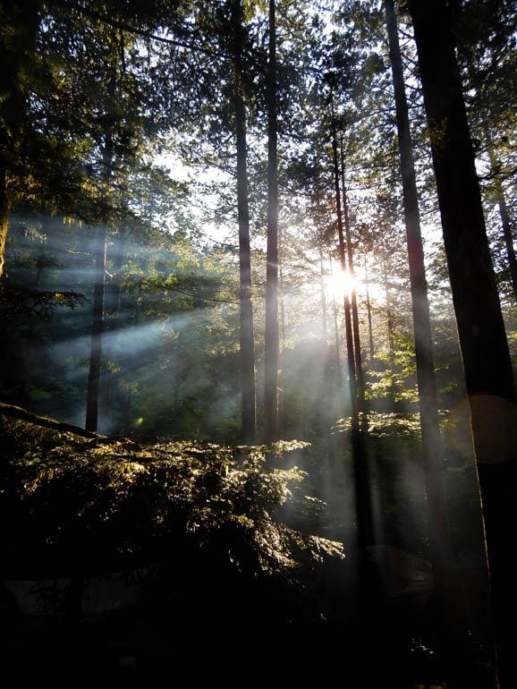 阿寺渓谷の朝